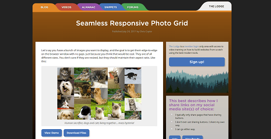seamless-responsive-photo-grid