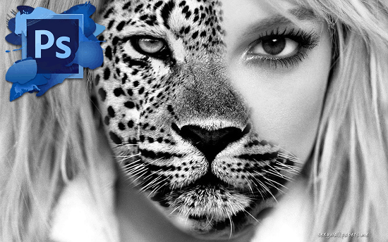 half-woman-half-animal-photoshop