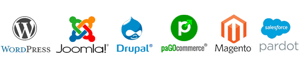 Core Maintenance & Support for WordPress, Joomla, Drupal, paGO Commerce, Magento and more